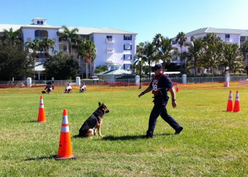 United States Police Canine Association 2012 National K-9 Trials, Oct. 15 - 18, 2012
